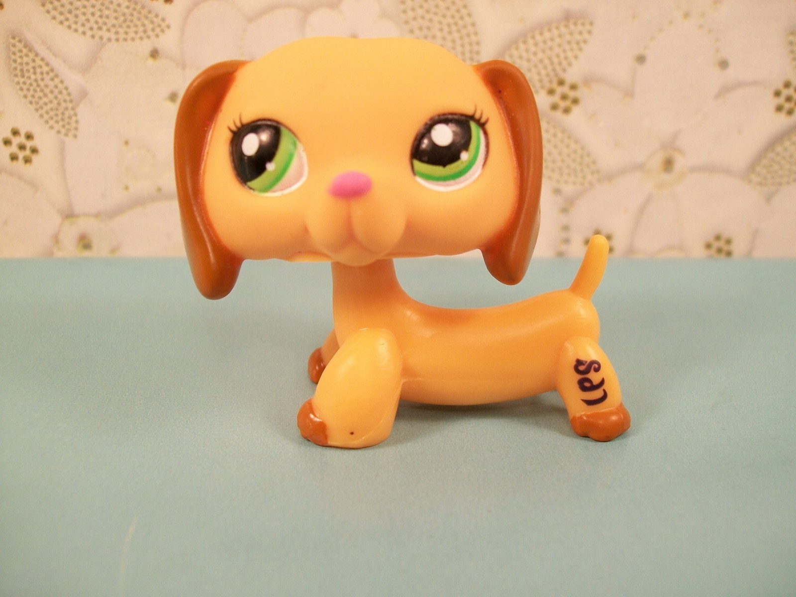 which dachshund do you want to get the most littlest pet shop