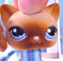 Who Is Your Favorite Character From Lps Popular Lps Popular Fanpop