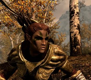 Wood: Skyrim Wood Elf