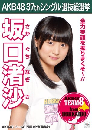 Which Team 8 2014 Senbatsu Sousenkyo Poster do te like the