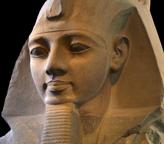 Handsome Egyptian Man