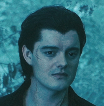 What do you think of Diaval (the raven guy from Maleficent)? Poll