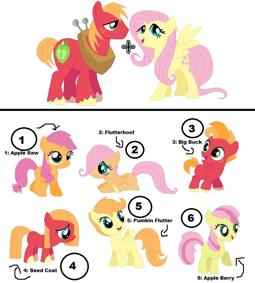 what do you like better of children of fluttershy or big macintosh
