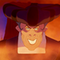 Frollo (The Hunchback of Notre Dame)