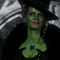 Zelena/The Wicked Witch of The West