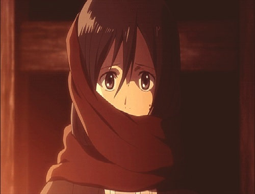 What do you think about mikasa from attack on titan for Mikasa es su casa