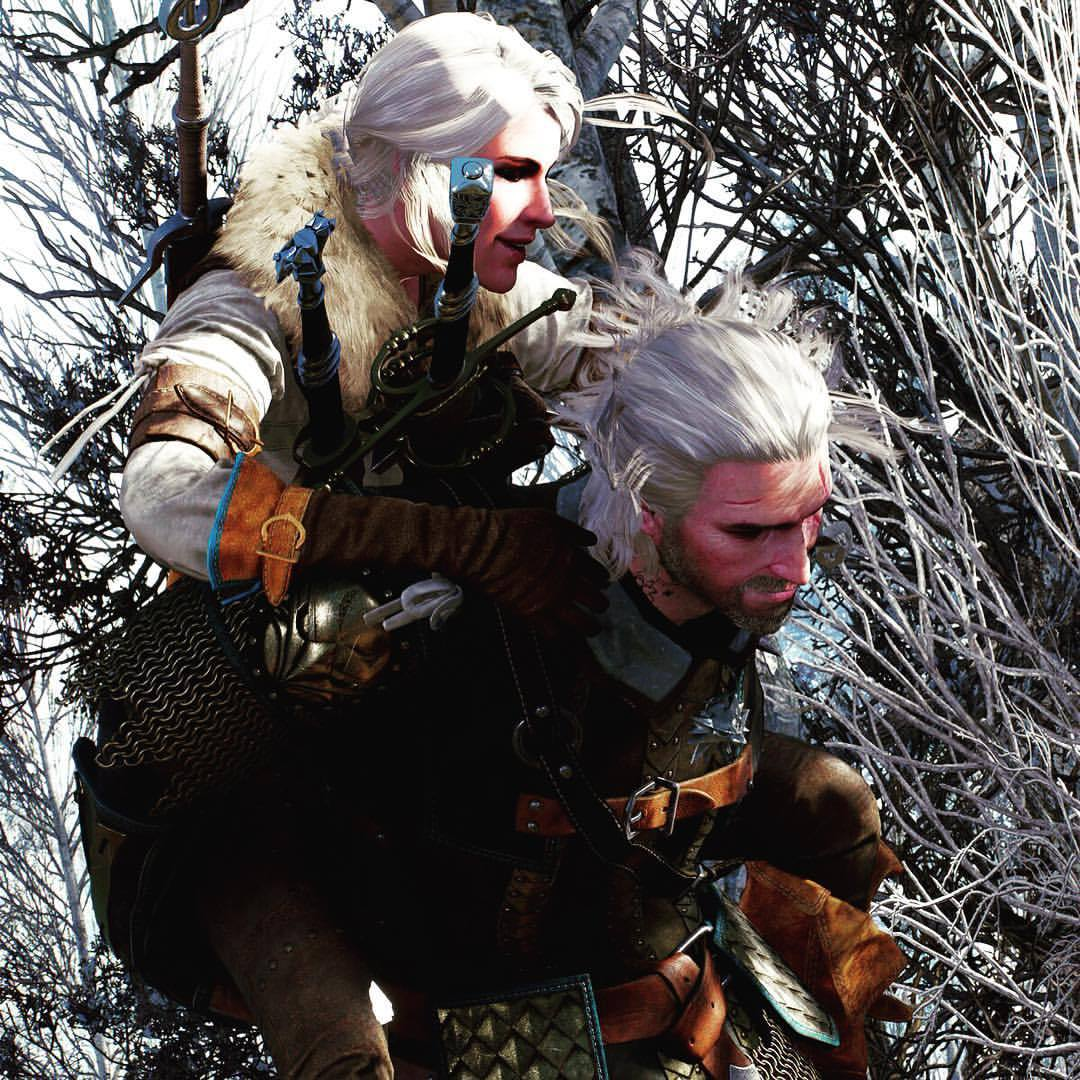 witcher 3 how to get the aerondight