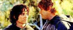 → I'm glad you're with me {the fellowship of the ring}