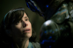 3. The Shape of Water