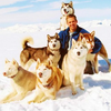 4.Eight Below / tanyya