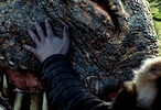 Jon pets a surprisingly happy and receptive Drogon