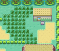 Kanto Safari Zone (Red/Blue/Fire Red/Leaf Green)