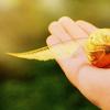 ➸ item: golden snitch