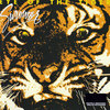 Eye of the Tiger (Survivor)