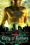 Currently Reading: City Of Bones