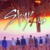 Stray Kids🌺