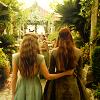 BEE - Sansa/Margaery || M E + T H E D E V I L
