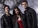 #8 The Vampire Diaries