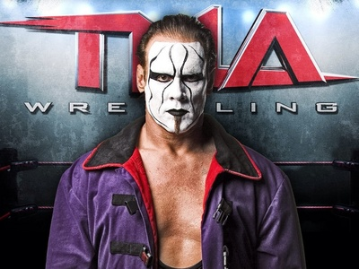 Who beat sting so he will never wrestling for the world heavy weight champion ship
