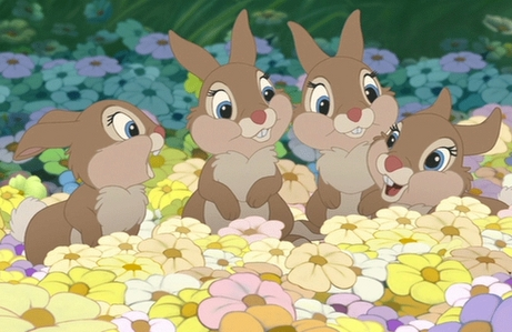 (left to right) What are Thumper's sisters names?