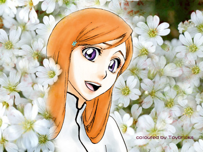 What is the name of Orihime's brother