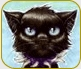 are black cats BAD luck?