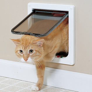 Who invented the cat door?
