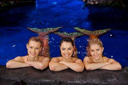 Mako Mermaids, which is taller ?