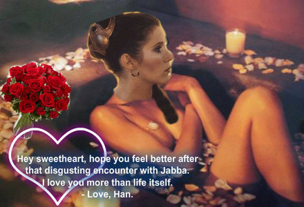 "True of False- there is a description of Princess Leia taking a ""relaxing bath, surround par flowers"" in Part one of "" the Jedi Academy"" book?"