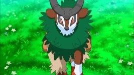 Name the Pokemon