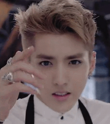 Out of these korean names, which of them is Kris's korean name?