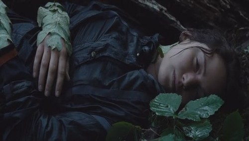 Who did Katniss see after she was sting from Tracker Jackers?