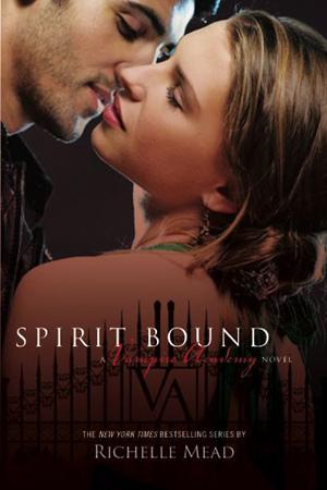 What Jahr was 'Vampire Academy: Spirit Bound' Von Richelle Mead released?