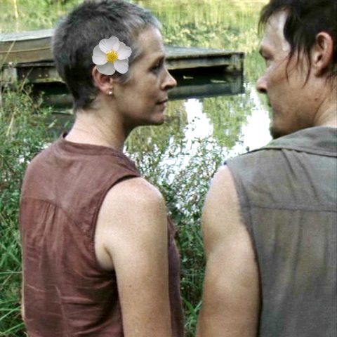 When Daryl leads Carol to a nearby swanp to show her a field of Cherokee roses blooming, does he kiss her?