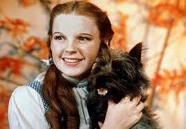 True or False: DG and her family are descendants of Dorothy from The Wizard of Oz.