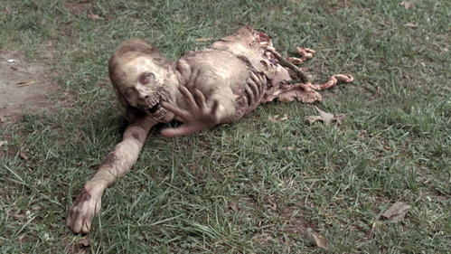 What is the name of 'Bicycle Girl' ?