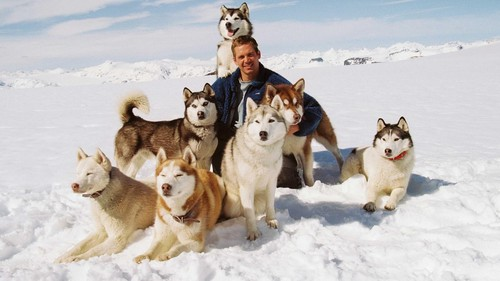Given the recent passing of Paul Walker, what Disney film did this photograph come from