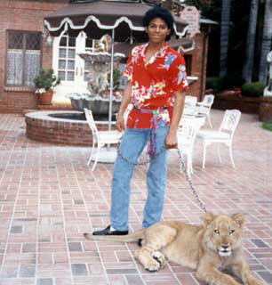 "Michael was portrayed kwa Wylie Draper in the 1992 two-part mini-series, ""The Jacksons: The American Dream"""