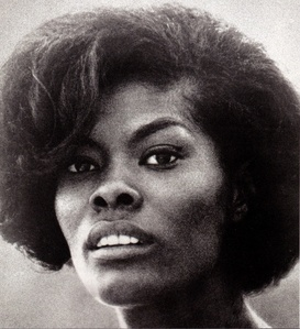 Whitney and singer, Dionne Warwick, were cousins