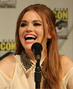When Holland Roden appeared in Cold Case as guest ngôi sao portraying the victim which ex Disney actor portrayed the killer
