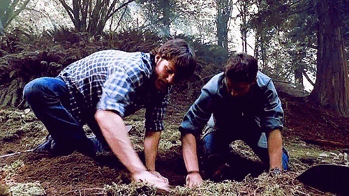 What are Sam and Dean digging up?