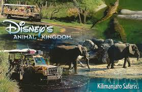 What is the name of the poached elephant in the Kilimanjaro Safaris at Animal Kingdom?