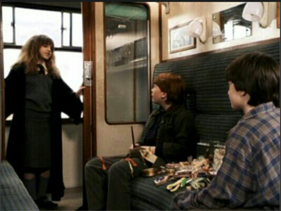 What was Hermione's first words to the Harry and Ron? (movie-based)