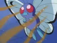 What ilipat is Ash's Butterfree using? (Revision)