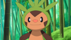 What gender is Clemont's Chespin?