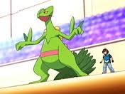 What gender is Ash's Sceptile?