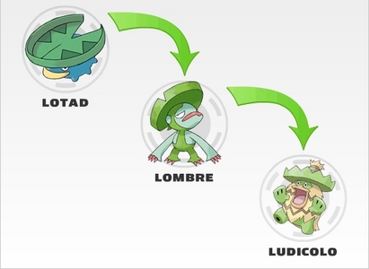 How long did it take for Brock's Lotad to fully evolve into Ludicolo?