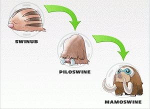 How long was it before Dawn's Swinub fully evolved into Mamoswine?