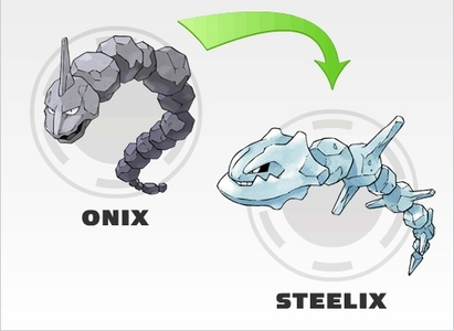 Which of these Gym leaders doesn't own an Onix or a Steelix (Onix's evolution)?