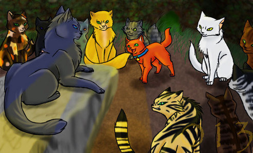 who is my 最喜爱的 cat from thunderclan